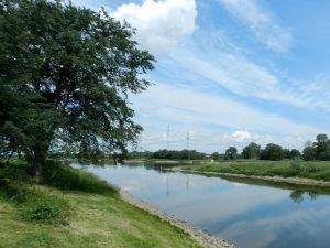 Elbe mit Elberadweg Walternienburg